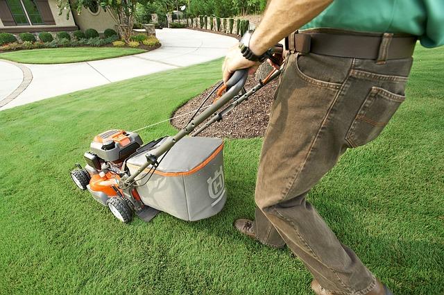 芝刈り機の画像。