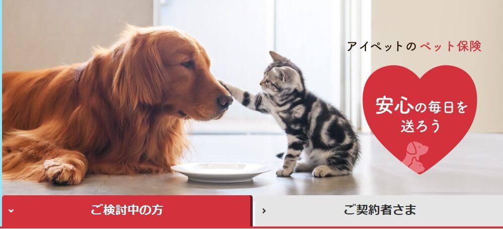 f:id:damemotoko:20190812215315j:plain