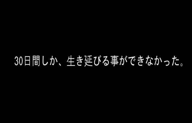 f:id:damidamio:20171227163351j:image