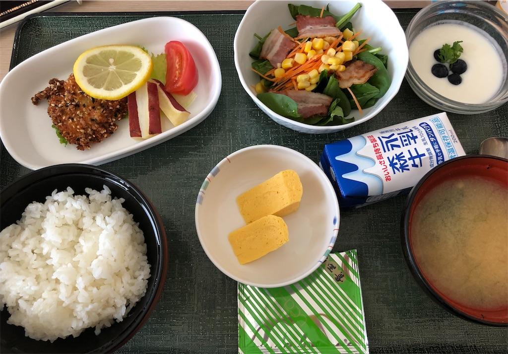 f:id:damomiiwasaki:20210529174038j:image