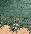 Spring creek shawl...dragonfly