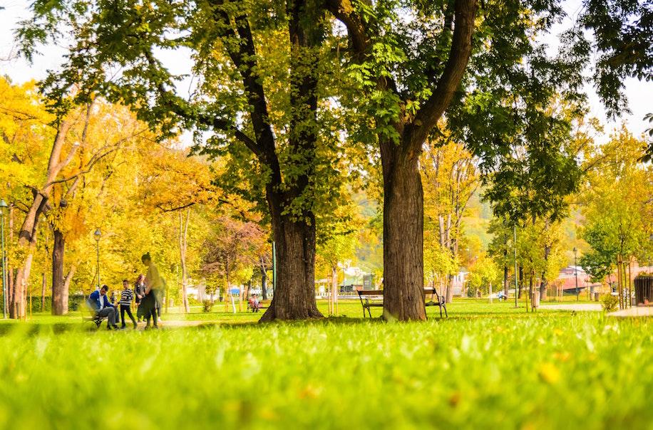 公園は平和そのもの