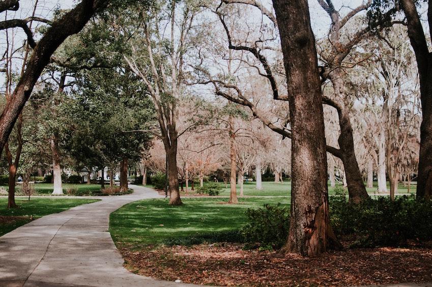 早朝の公園はランニングに最適