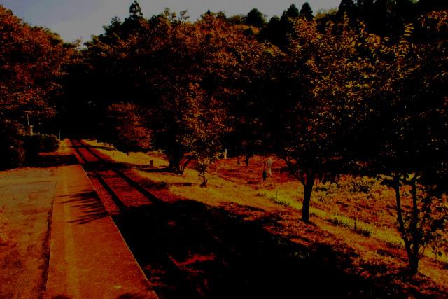 f:id:dandelion-hill:20170407111251j:plain