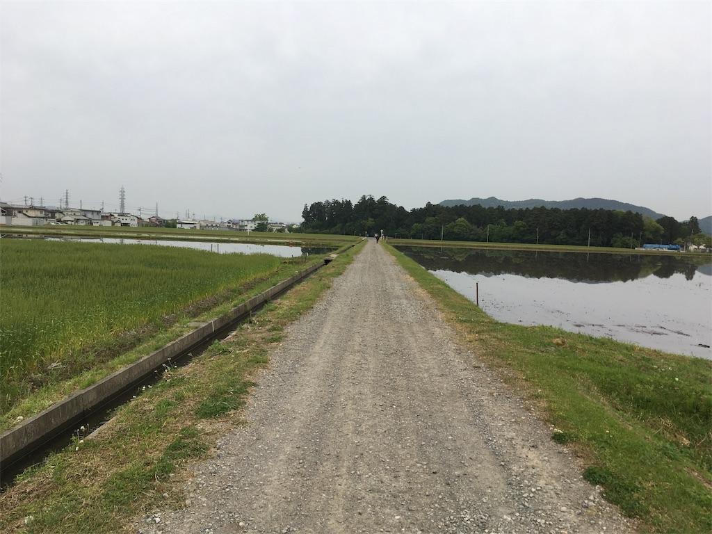 f:id:dango-ryo:20170509062357j:image