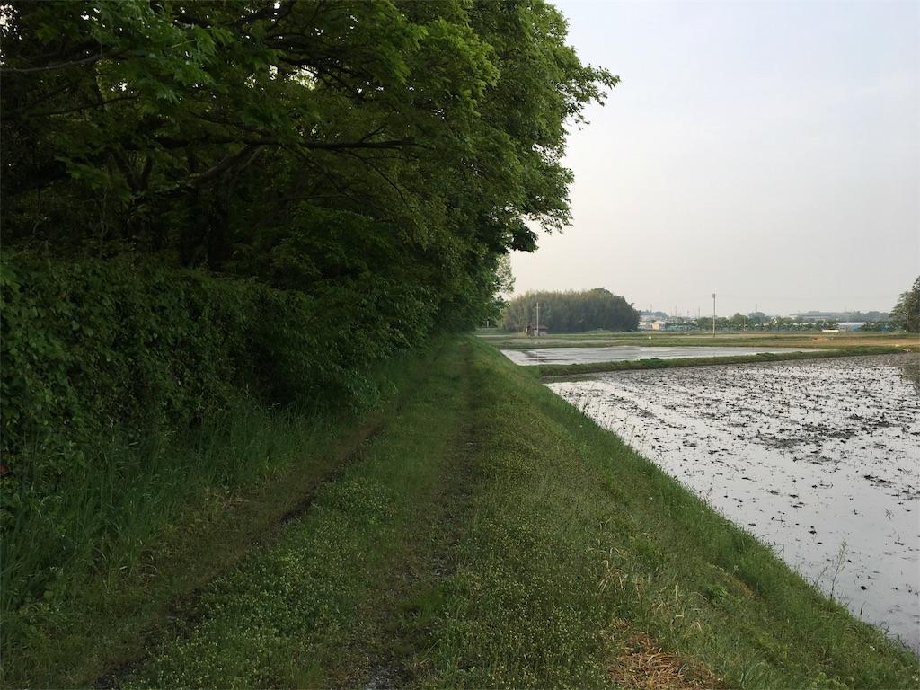 f:id:dango-ryo:20170512062629j:image