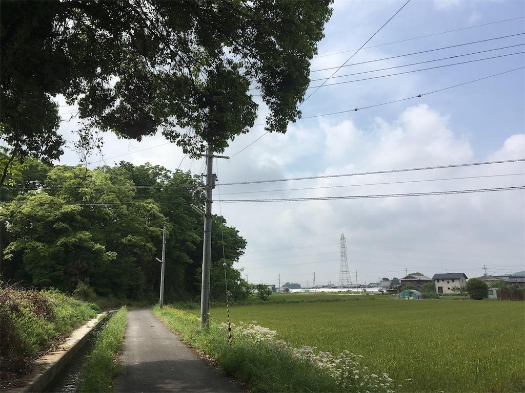 f:id:dango-ryo:20170514092642j:image
