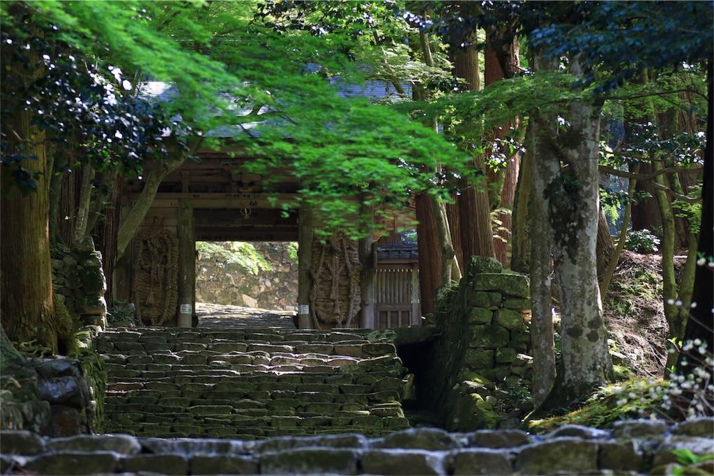 f:id:dango-ryo:20180428113052j:image