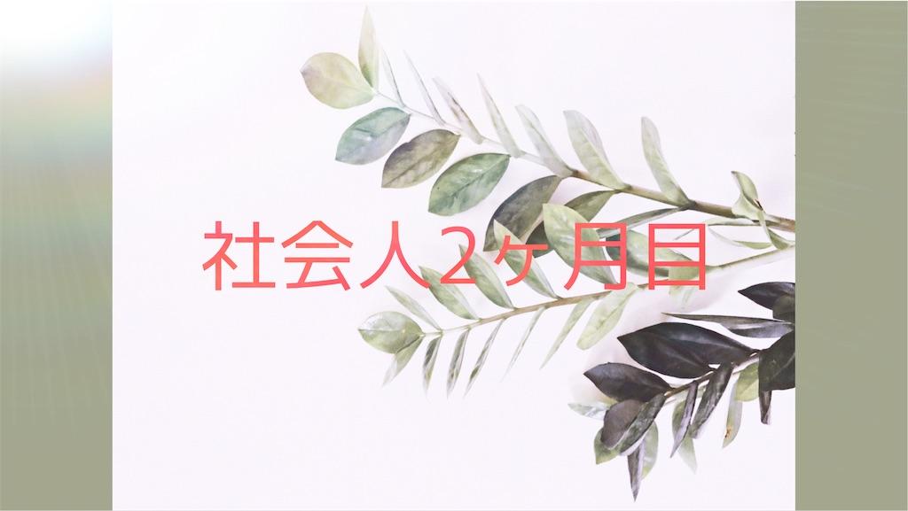 f:id:dangorogoro:20200520190838j:image