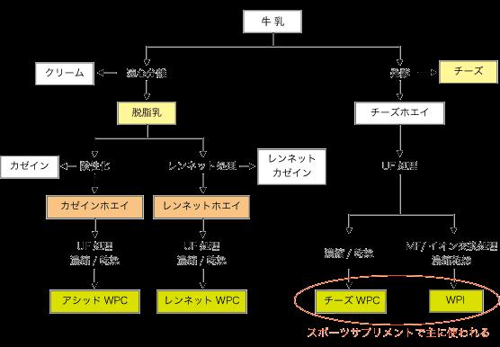 プロテイン 製造方法