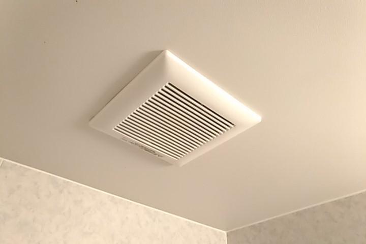 f:id:danmanjp:ユニットバスの天井