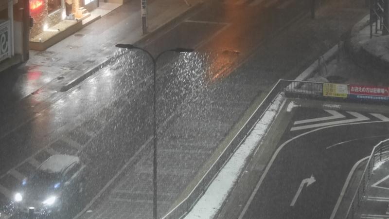 ズームレンズで写した降る雪