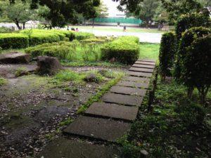 湘南台公園3