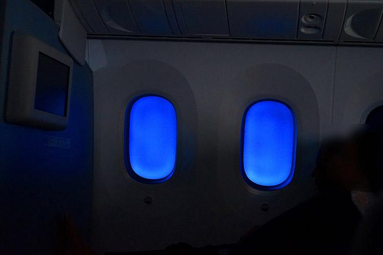 ANA 787-9プレミアムエコノミー 機内