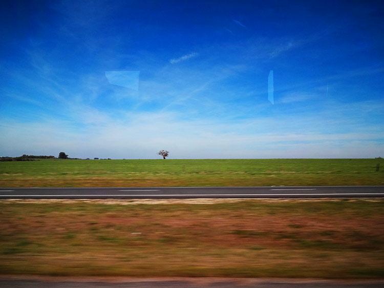 ウルグアイ 草原