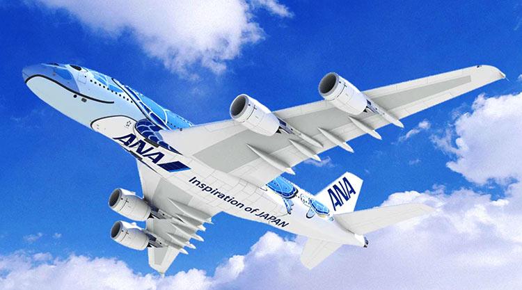 ANA A380 ホヌ