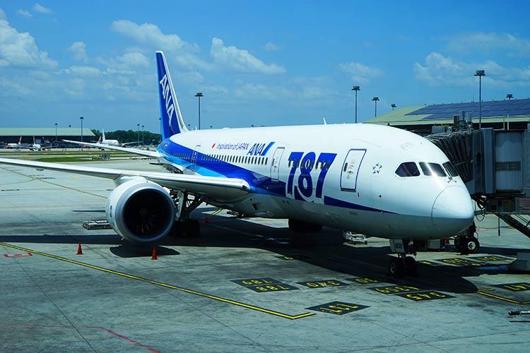 ANA 787-8