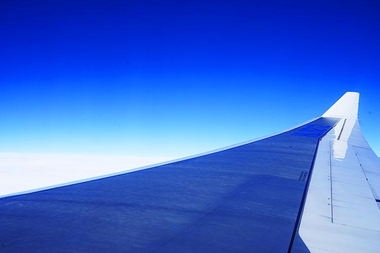 機内かなの光景