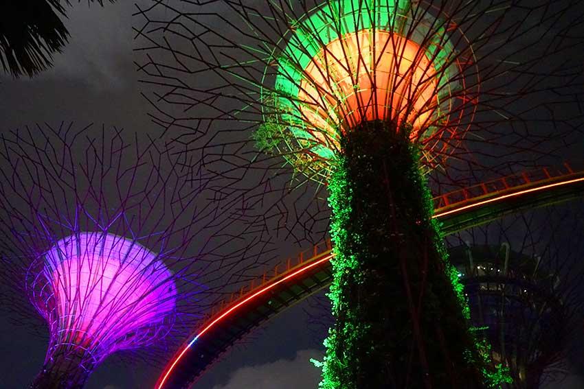 シンガポール ガーデンズ