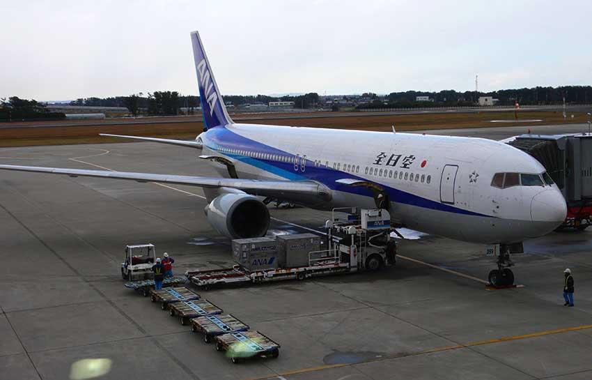 全日空767