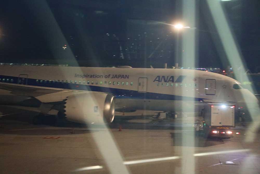 ANA B787