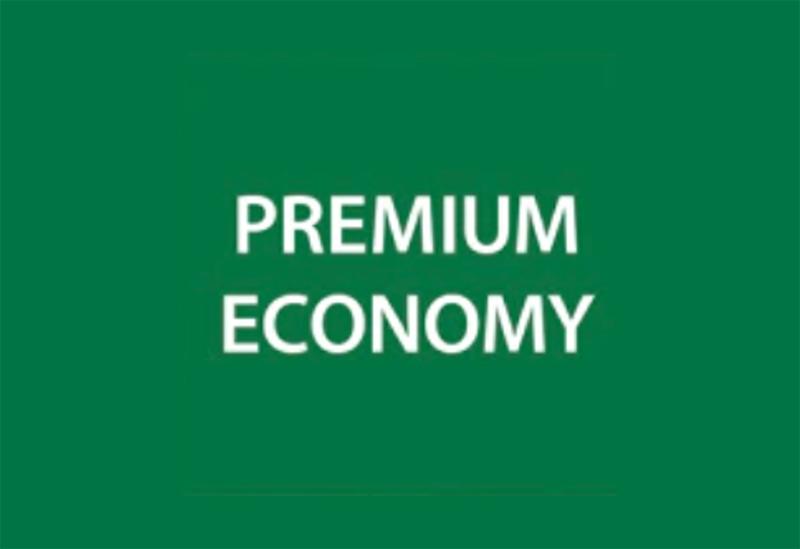 ANA premium economy