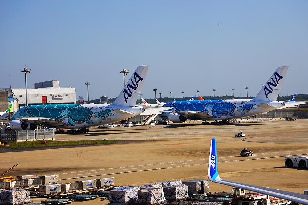 ANA A380 一号機二号機