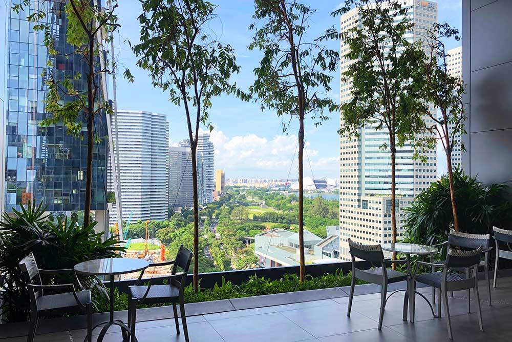 JW MARRIOTT HOTEL SINGAPORE SOUTH BEACHプールサイド