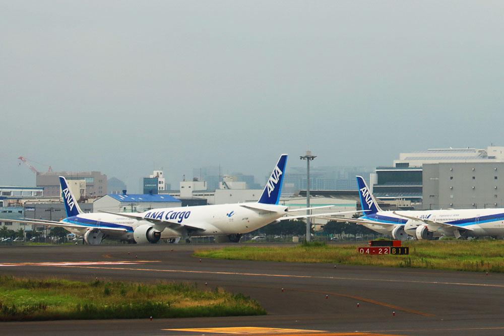 ANA Cargo 777F
