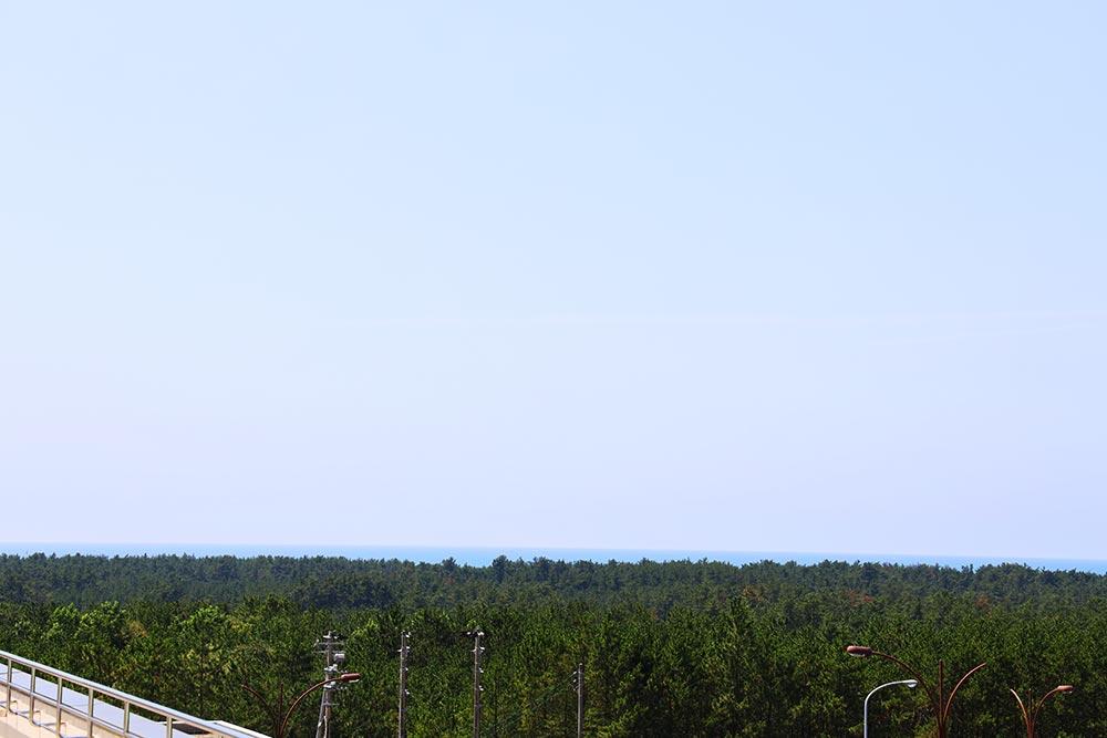 展望台からの海の景色