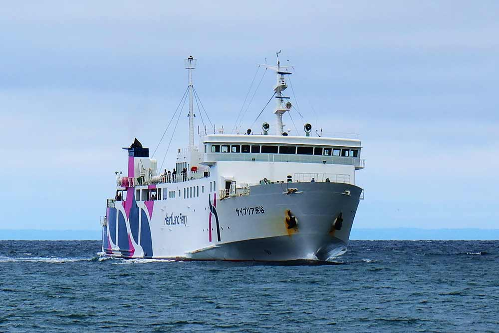 入港するサイプリア号