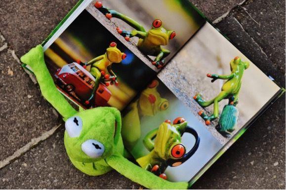 カエルの人形が絵本を読んでいる写真