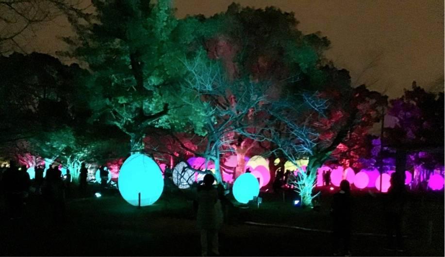 チームラボ 福岡城跡 卵型の光るオブジェ