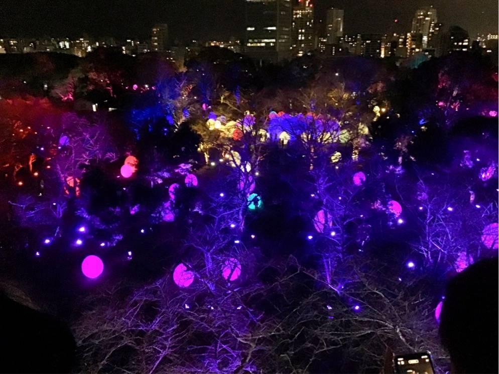 チームラボ 福岡城跡 光の祭 卵型のオブジェ 上から見た写真