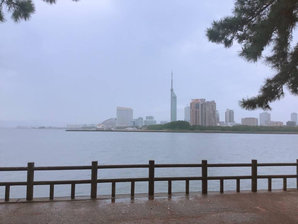 愛宕浜から見た福岡タワー