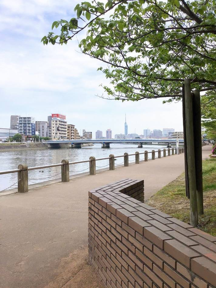 室見川と福岡タワー