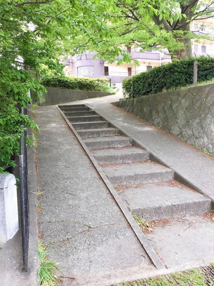 所々に遊歩道から出られる階段がある