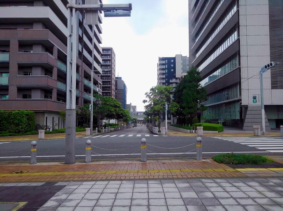 中央公園から姪浜駅方面を見たところ