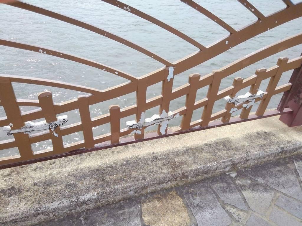 愛宕大橋の欄干のしろうお