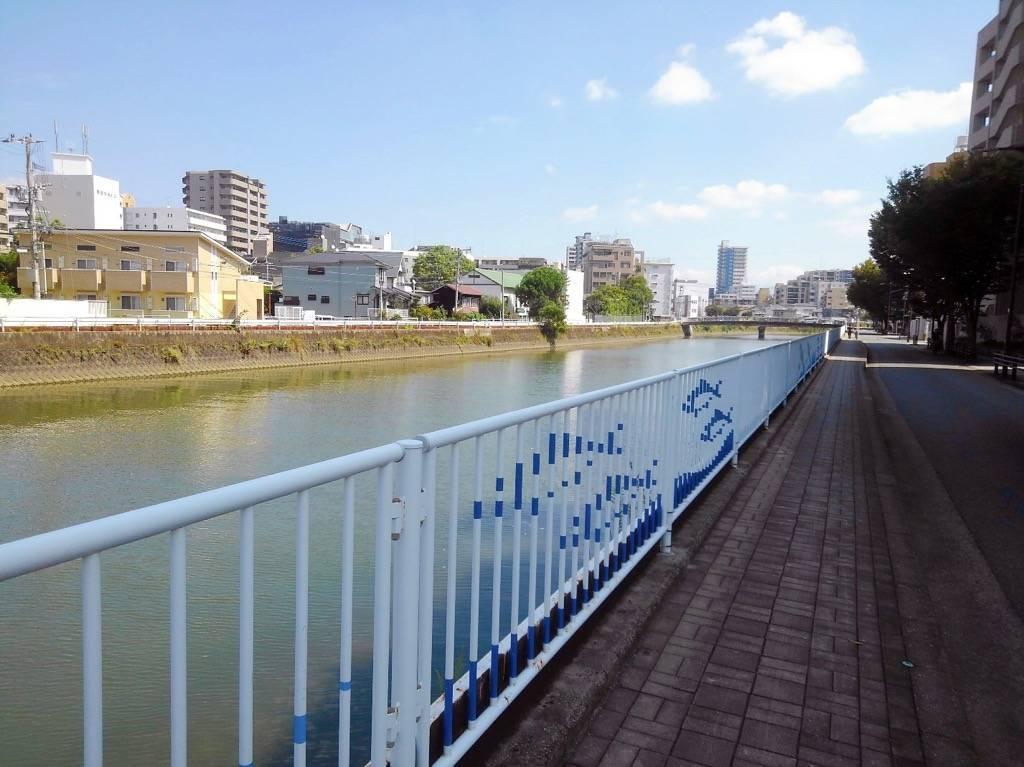 樋井川沿いの歩道