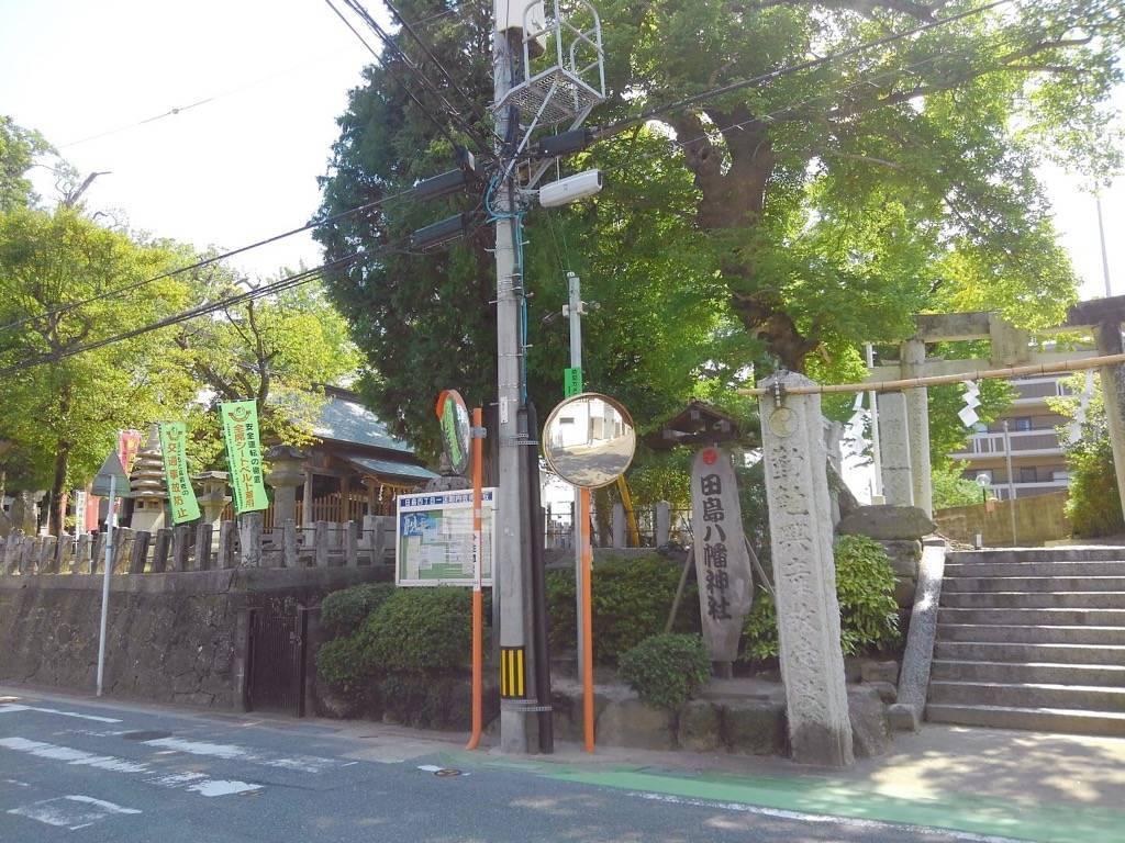 田島八幡神社の木