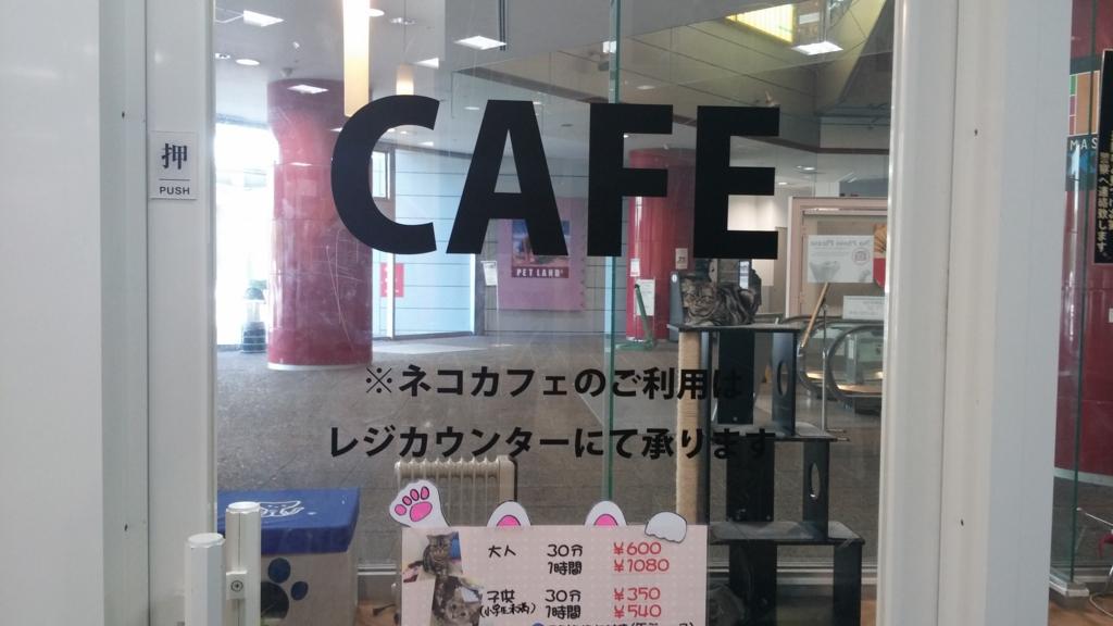 猫カフェ 札幌