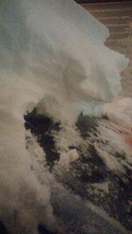 フロントガラスに積もる雪