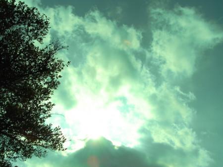 f:id:darchtn:20100214103050j:image