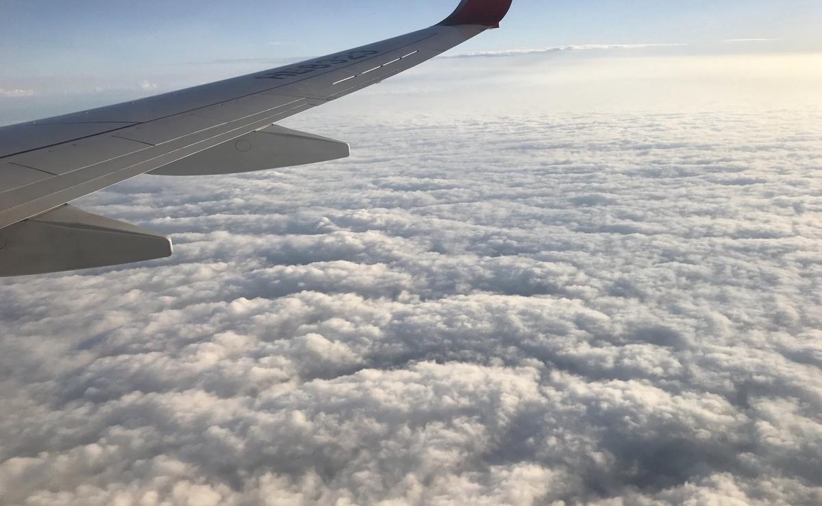 海外に行くときに乗る飛行機