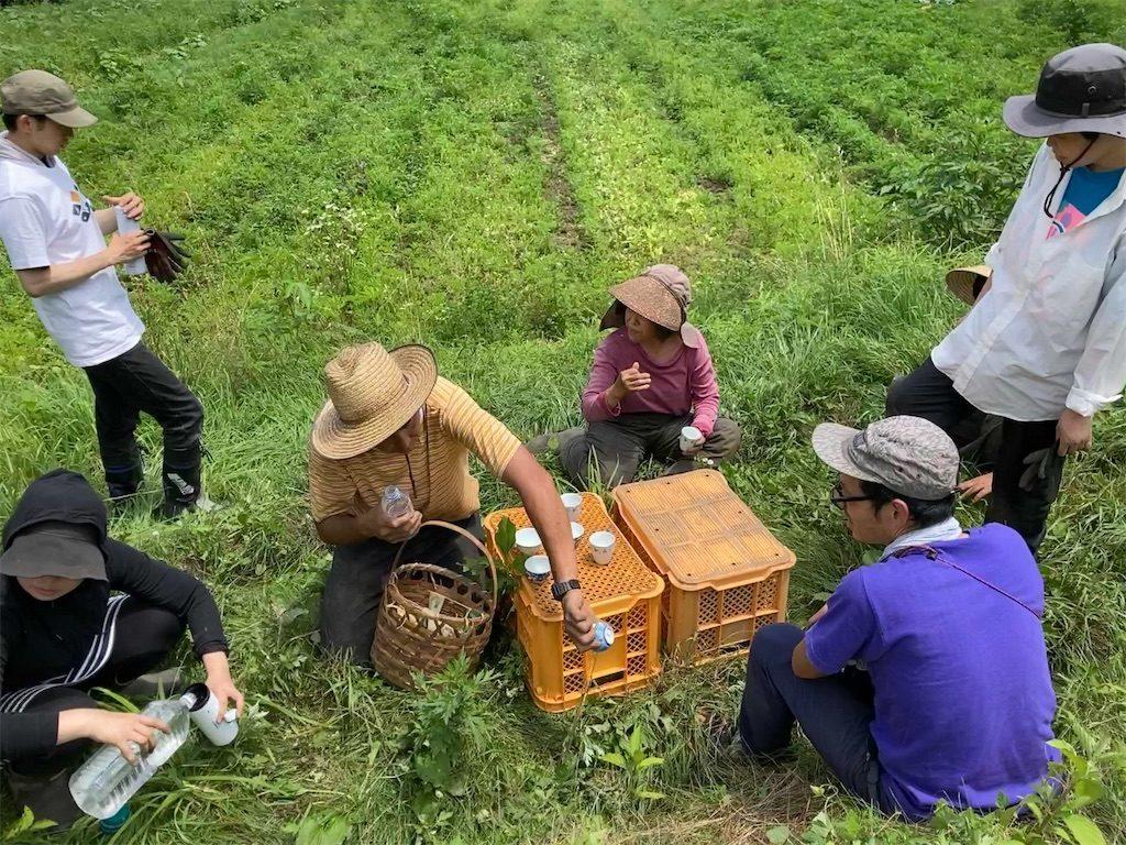 ジャガイモ堀りの休憩をしている人たち