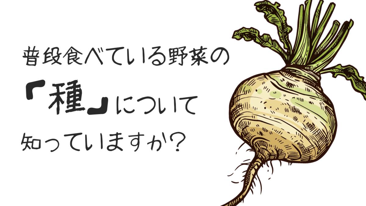 普段食べている野菜の種について知っていますか