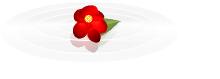 f:id:darucoro9216kun:20200113113907p:plain