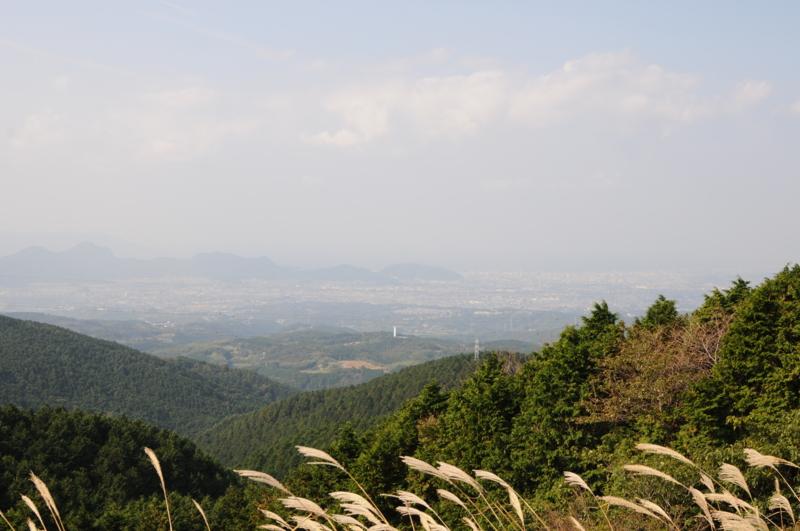 f:id:daruyanagi:20121027093802j:plain