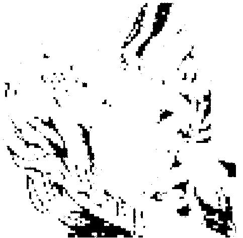f:id:daruyanagi:20150315184240p:plain